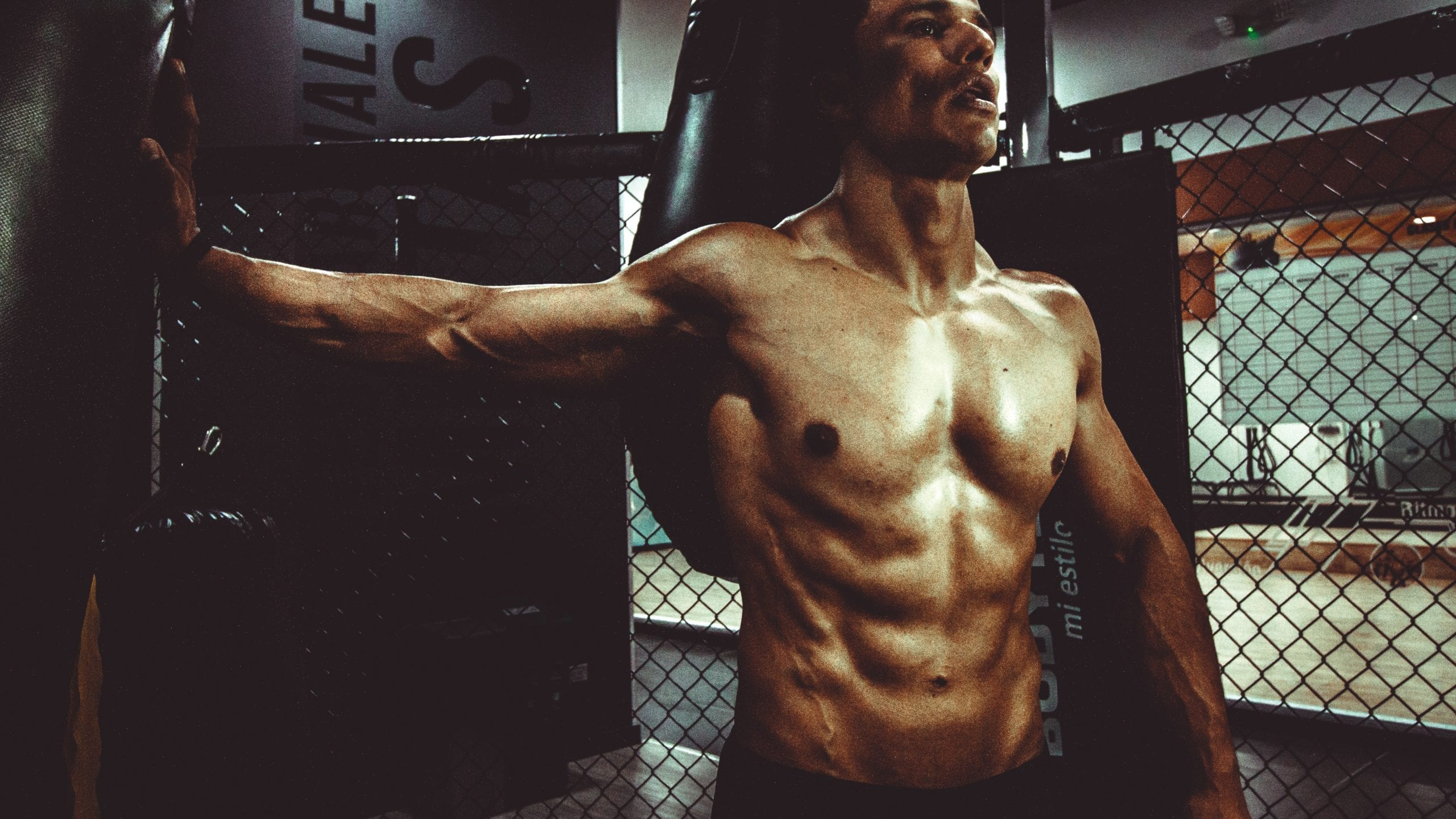 How Does Testosterone Level Influence Muscle Gain